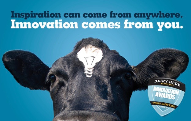 world dairy innovation awards 2016, anna lukanina, branding, depot wpf, glba